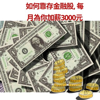 存金融股,為自己加薪3000元
